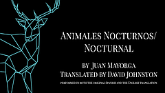 Stage: Animales Nocturnos, Nocturnal