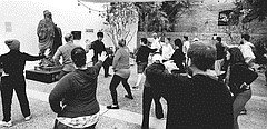Chinese Tai Chi in the Garden